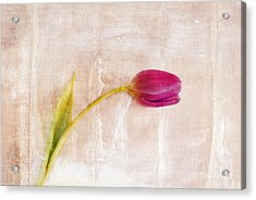Penchant Naturel - 09c3t08 Acrylic Print by Variance Collections