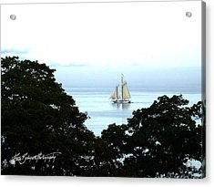 Penobscot Bay Sailing Acrylic Print by Ruth Bodycott