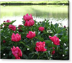 Acrylic Print featuring the photograph Peony Lake Reflections  by Rebecca Overton