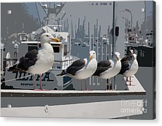 Perched Seagulls Acrylic Print by Sonny Marcyan