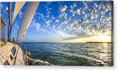 Perfect Evening Sailing On The Charleston Harbor Acrylic Print by Dustin K Ryan