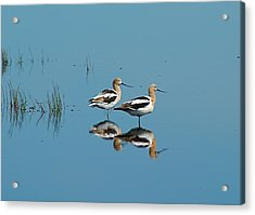 Acrylic Print featuring the photograph Perfect Reflection by Kathy Gibbons