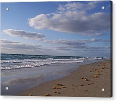 Acrylic Print featuring the photograph Perfection by Sheila Silverstein