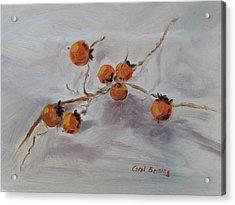 Persimmons Acrylic Print by Carol Berning
