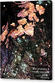 Perso Woodoh Acrylic Print by Cazyk Photography