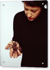 Pet Tarantula Acrylic Print by Lawrence Lawry