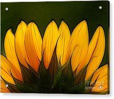 Petales De Soleil - A12 Acrylic Print