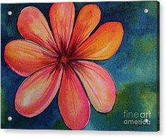 Petals Acrylic Print by Carolyn Weir
