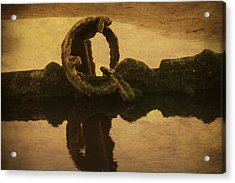 Peter Iredale Acrylic Print by Terrie Taylor