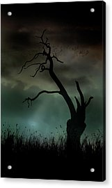 Acrylic Print featuring the photograph Petrified by Richard Piper