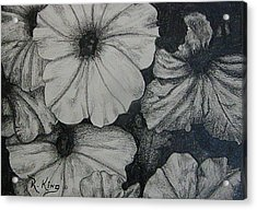 Acrylic Print featuring the drawing Petunia's In The Sun by Roena King
