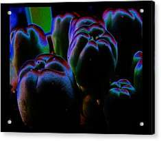 Acrylic Print featuring the photograph Peyote Mind by Susanne Still