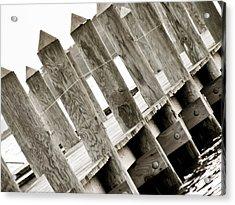 Phillies Dock Halladay Acrylic Print by Trish Tritz
