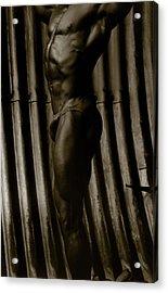 Photo 1 Acrylic Print by Marcin and Dawid Witukiewicz