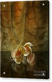 Acrylic Print featuring the digital art Physalis by Johnny Hildingsson