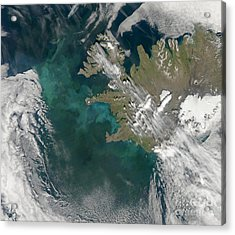 Phytoplankton Bloom In The North Acrylic Print by Stocktrek Images