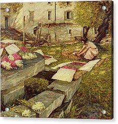 Picking Stocks Acrylic Print by Henry Herbert La Thangue