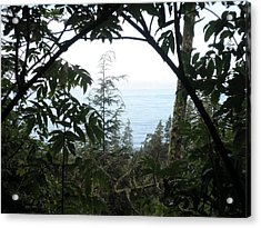 Picture Perfect Acrylic Print by Elizabeth  Ford