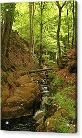 Picturesque Creek Acrylic Print