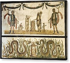 Pig Sacrifice, Roman Fresco Acrylic Print by Sheila Terry