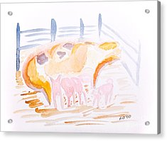 Pig With Piglets  Acrylic Print by Simon Bratt Photography LRPS