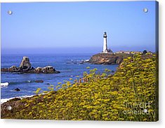 Pigeon Point Lighthouse California Coast Acrylic Print by Mike Nellums