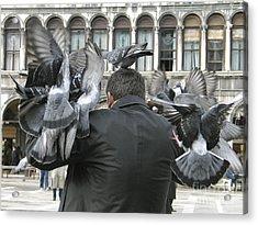 Pigeons. Venice Acrylic Print by Bernard Jaubert