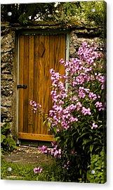Pine Door Acrylic Print by Peter Jenkins