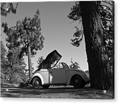 Pine Mountain California Acrylic Print by Ian Stevenson