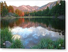 Pine Valley's Tranquility Acrylic Print