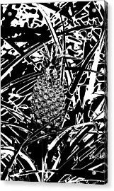 Pineapple  Acrylic Print by Elizabeth  Doran
