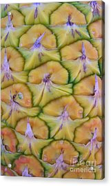 Pineapple Eyes Acrylic Print by Mary Deal