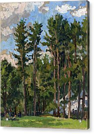 Pines At Tanglewood Acrylic Print
