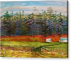 Pines Behind The Barns Acrylic Print by John Williams