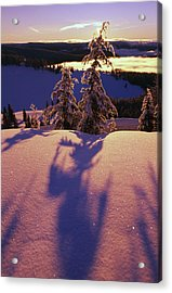 Pink And Purple Sunrise Shadows Of Snow Acrylic Print by Natural Selection Craig Tuttle