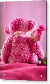 Acrylic Print featuring the photograph Pink Bear Behind Holding Pink Rose by Ethiriel  Photography