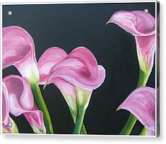 Pink Calla Lily's Acrylic Print