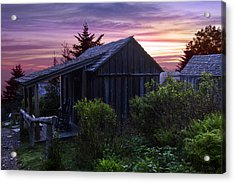Pink Dawn Acrylic Print by Debra and Dave Vanderlaan