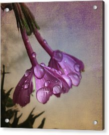 Acrylic Print featuring the photograph Pink Droplets by Deborah Smith