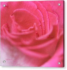 Acrylic Print featuring the photograph Pink Edges by Joan Bertucci