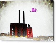 Pink Floyd Animals - Wilkes Barre Acrylic Print by Bill Cannon