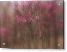 Acrylic Print featuring the photograph Pink Haze by Coby Cooper