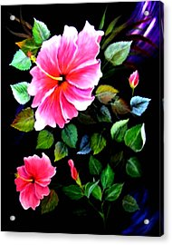 Pink Hibiscus Acrylic Print by Fram Cama