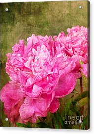 Pink Peony Texture 3 Acrylic Print by Bob and Nancy Kendrick