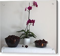 Pink Phalaenopsis Orchid And Sour Cherries Acrylic Print