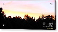 Pink Skies Acrylic Print by Lorraine Louwerse