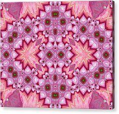 Pink Splash Mandala Abstract Acrylic Print by Georgiana Romanovna