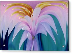 Pink Water Lily Acrylic Print by Pat Exum