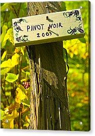 Pinot  03 Acrylic Print by James Rowland