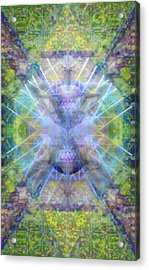 Pivortexspheres In Chalicell Garden Of Light Acrylic Print by Christopher Pringer